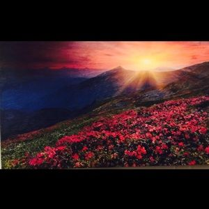 Other - Sun- Rays Oil Painting.